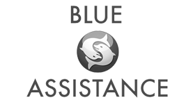 Logo Blue Assistance